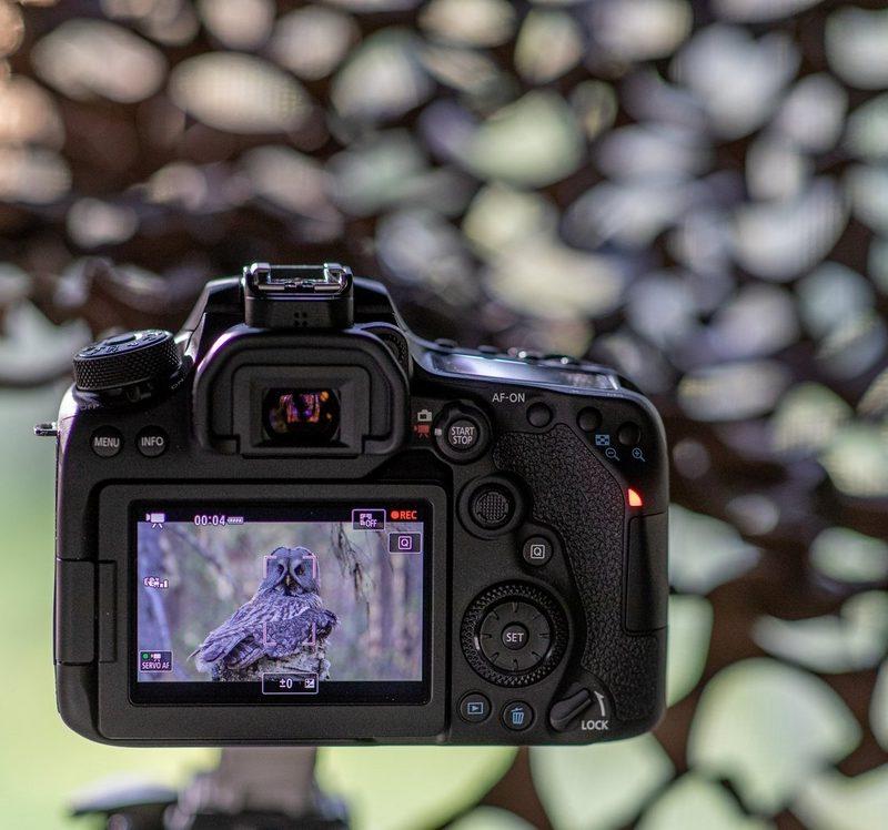 video 4k canon eos 90d